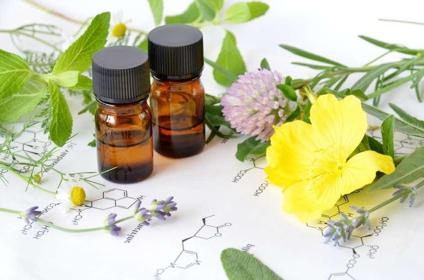 Benefícios do óleo de prímula