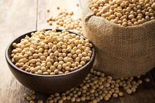 Propriedades da soja e seus benefícios