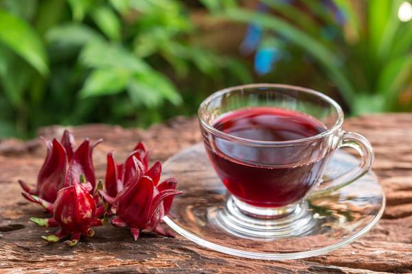 Como tomar hibisco – Contraindicações e História
